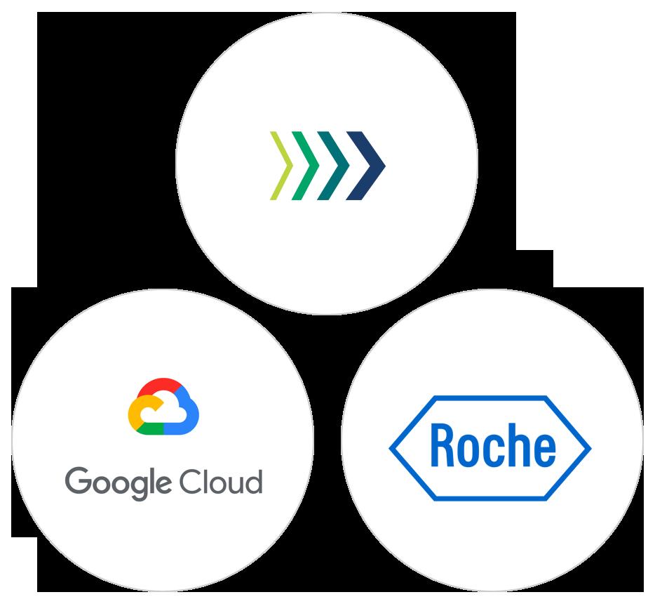Google page split roche webinar